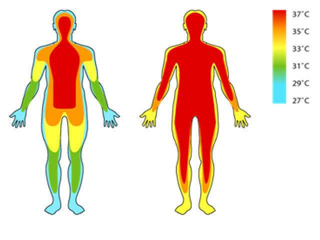 Все мы помним нормальную температуру тела человека — 36.6 градусов.…