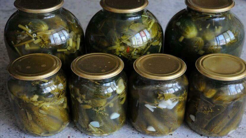 Самые вкусные огурцы на зиму холодным способом без уксуса для хранения в квартире_1