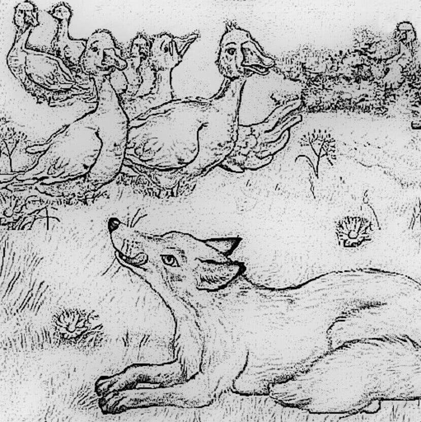 Читать сказку Ушинский — Лиса и гуси