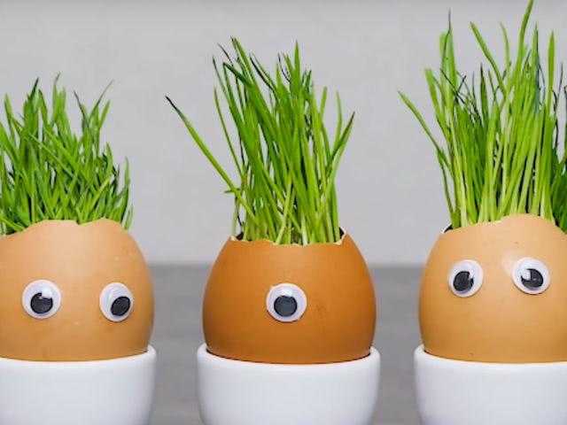 1. В сыром яйце делаем осторожно отверстие и выливаем содержимое…