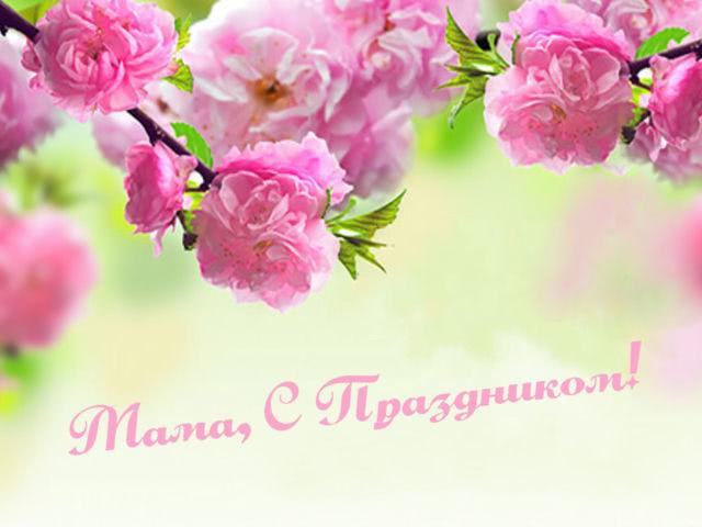 Стихи про маму на День матери: короткие, красивые, трогательные и веселые. Стихи для детей с Днем матери до слез