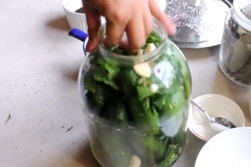 Рецепт пошагово малосольных огурцов быстрого посола в холодной воде, фото2