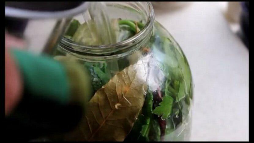 Рецепт пошагово малосольных огурцов быстрого посола в холодной воде, фото3