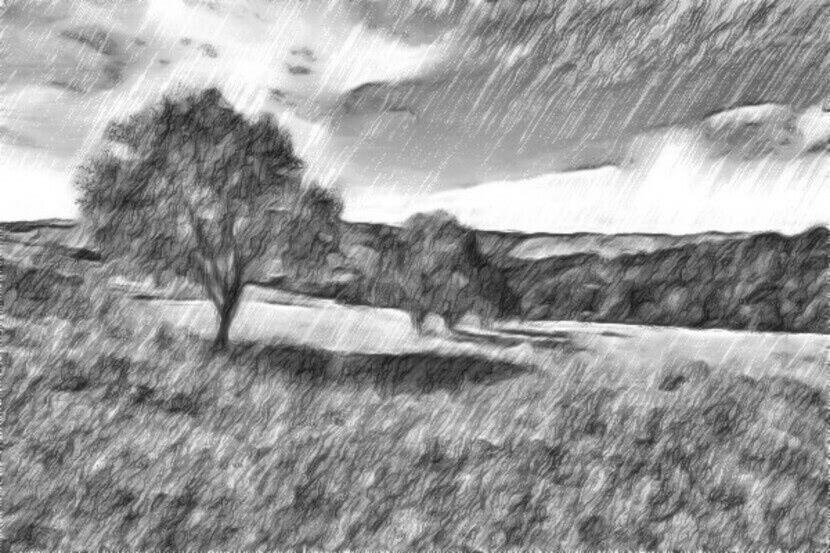 Читать сказку Ушинский — Спор деревьев