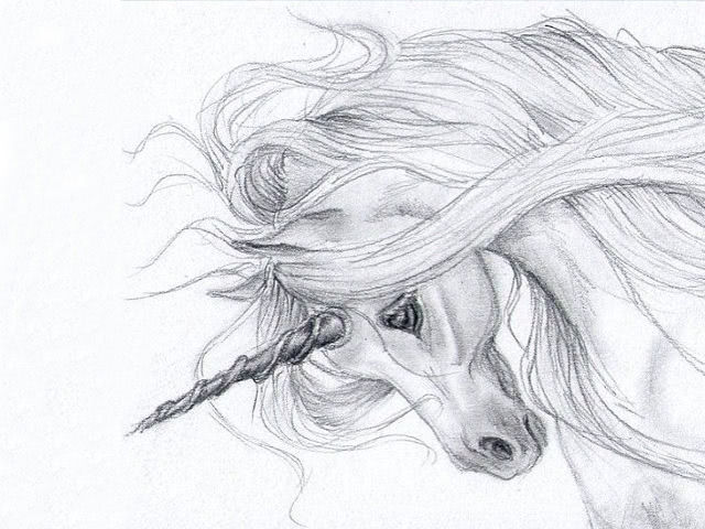 Лёгкие и красивые рисунки карандашом для срисовки детьми