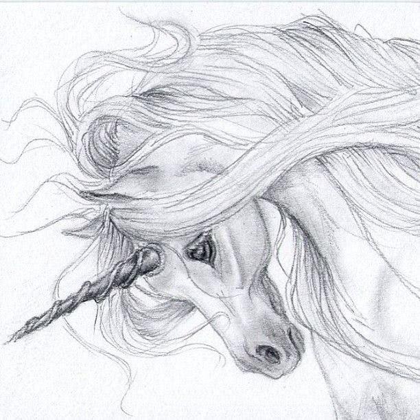 Срисовка карандашом единорога для начинающих-1
