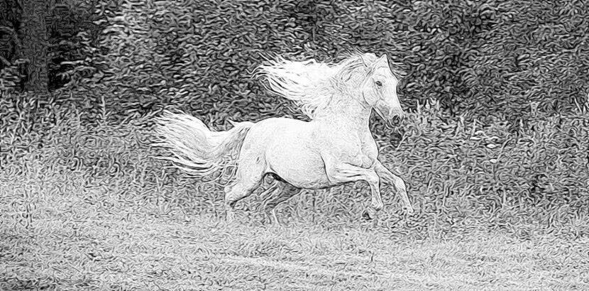 Читать стихи Ушинский — Борзый конь