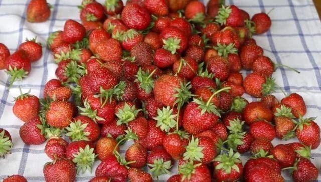 Пошаговый рецепт варенья из клубники с целыми ягодами на зиму, фото_1