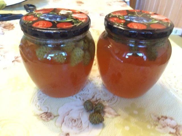 Вкусное варенье из сосновых шишек – рецепт с медом пошагово_1