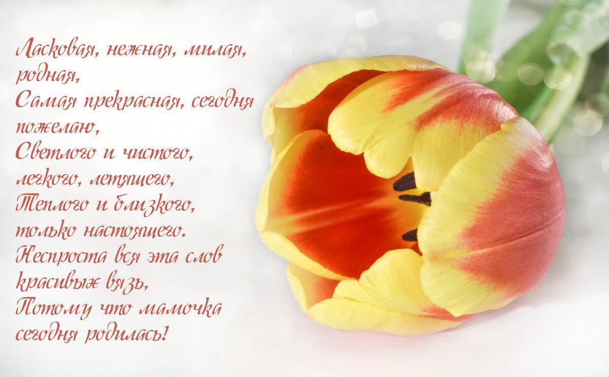 Красивые стихи в картинках маме на день рождения от дочери - до слез-7
